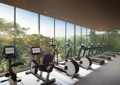 Avenue South Residence 南峰雅苑 indoor gym